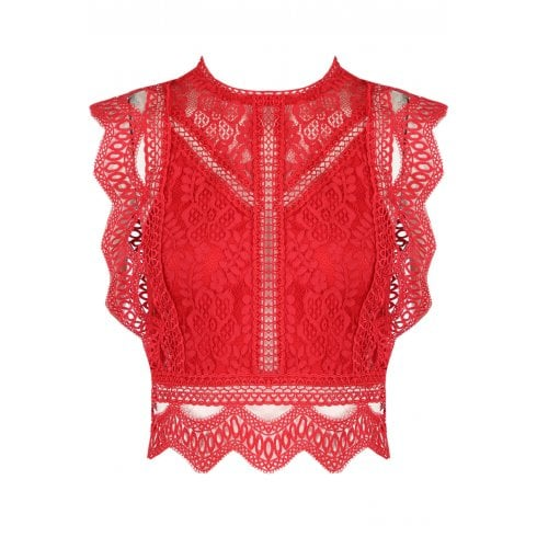 Red Lace Crochet Floral Plunge Low Neck Cami Crop Top